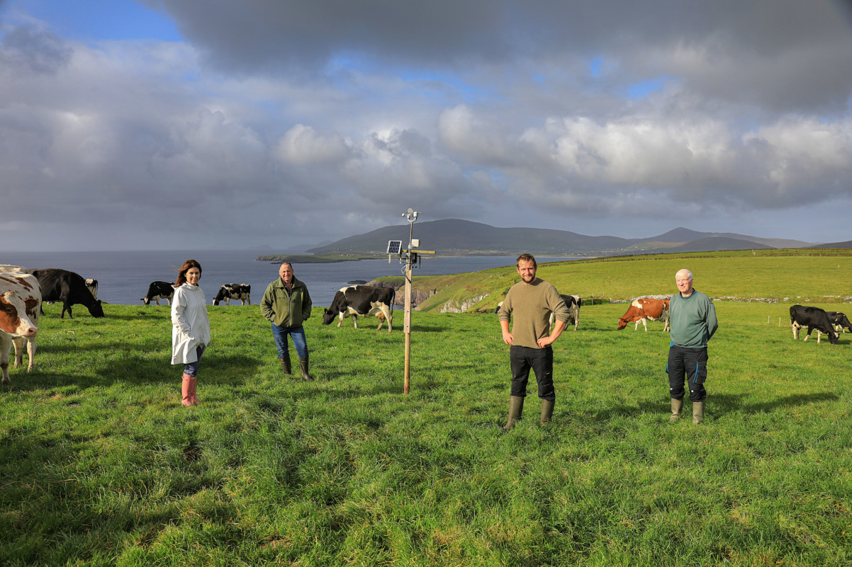 Read more about the article Dingle Hub Update 8 July
