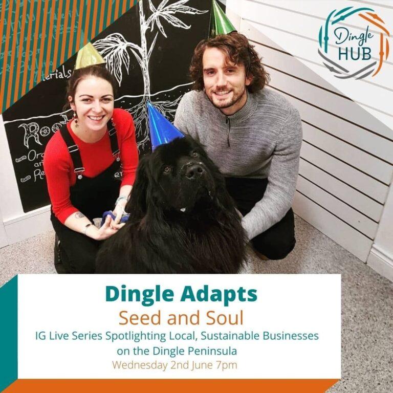 Dingle Hub Update 27 May